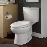 American Standard H2Option Dual Flush Right Height Elongated
