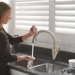 Delta kitchen touch faucet
