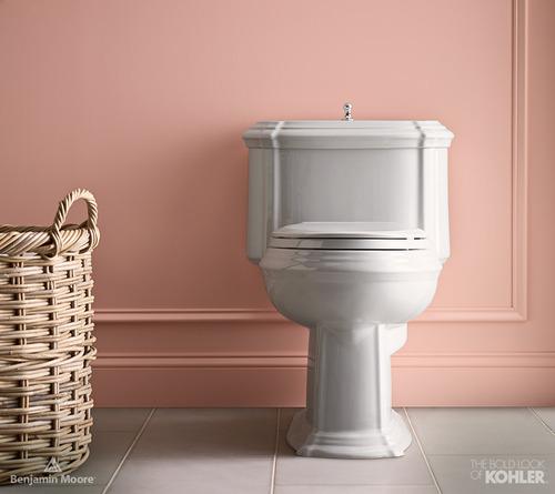 kohler toilet shot